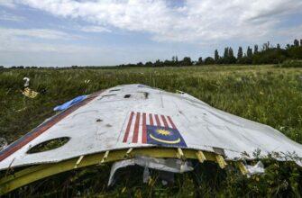Захарова назвала абсурдом внесение голландским следствием фамилии Шойгу в дело MH17