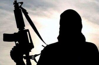 Информационный терроризм. В современном мире сам акт террора становится второстепенным