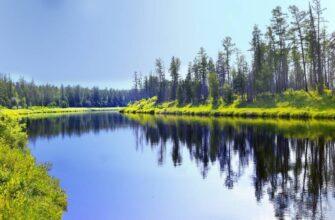 В Сибирь пришла аномальная жара: что происходит с российской погодой