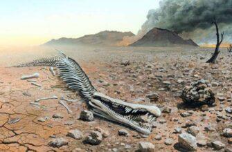 Великое вымирание. Почему могут исчезнуть отдельные типы вооружений?