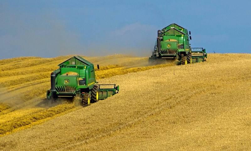 Ограничения экспорта: почему России нужно быстрее снять квоты на продажу зерна